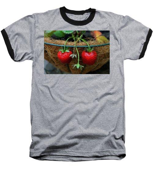 Strawberries Baseball T-Shirt by Pamela Walton