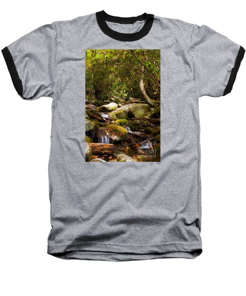 Stream At Roaring Fork Baseball T-Shirt by Lena Auxier