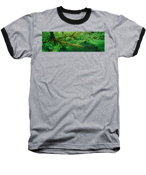 Stream Flowing Through A Rainforest Baseball T-Shirt by Panoramic Images
