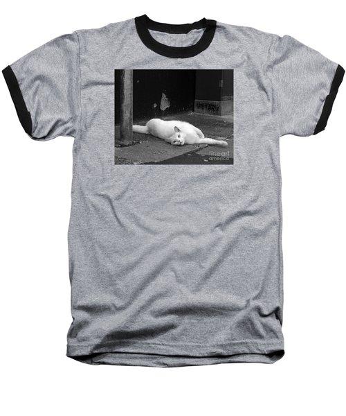 Street Cat Baseball T-Shirt