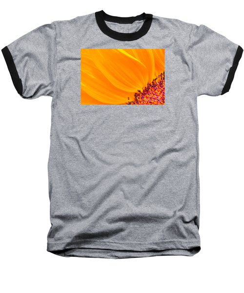 Stretching Out Baseball T-Shirt by Jim Carrell