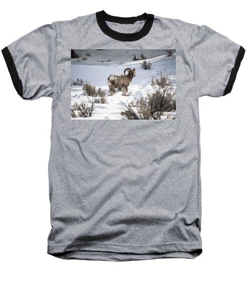 Striking A Pose Baseball T-Shirt