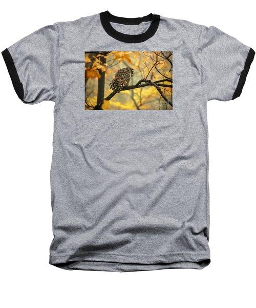 Stubborn Owl Baseball T-Shirt