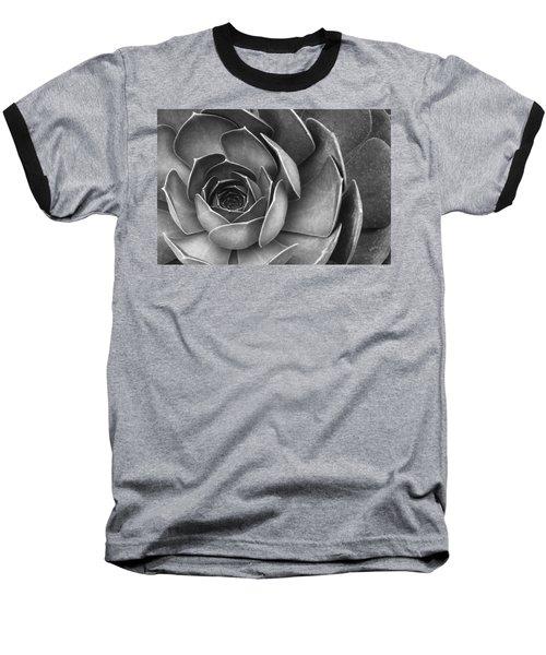 Succulent In Black And White Baseball T-Shirt by Ben and Raisa Gertsberg