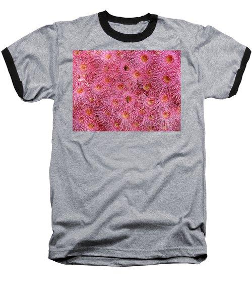 Summer Beauty Baseball T-Shirt by Evelyn Tambour