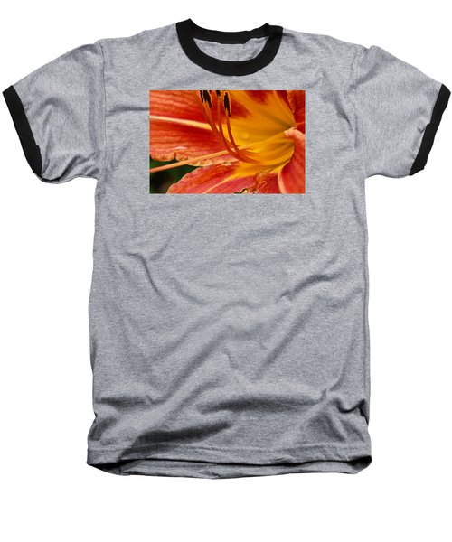 Summer Daylily Baseball T-Shirt by Julie Andel