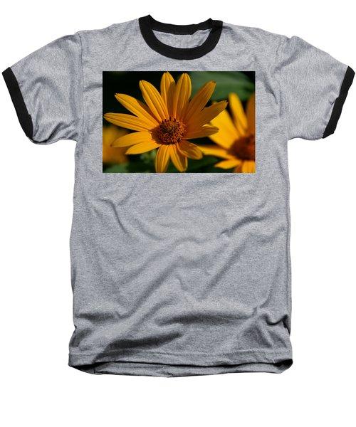 Summer Delight Baseball T-Shirt by Denyse Duhaime