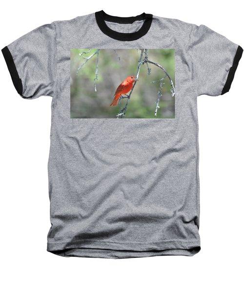 Summer Tanager Baseball T-Shirt