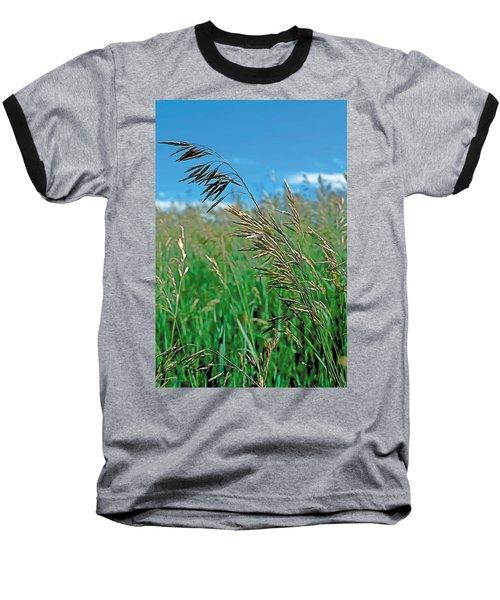 Summer Baseball T-Shirt by Terry Reynoldson