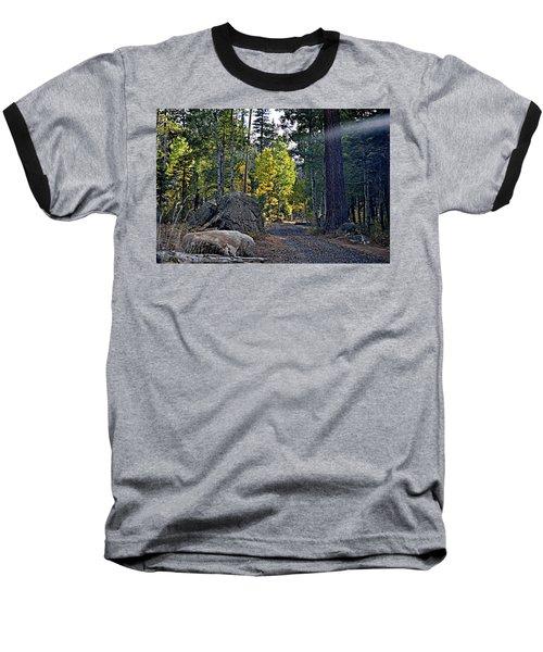 Sun Beam Baseball T-Shirt