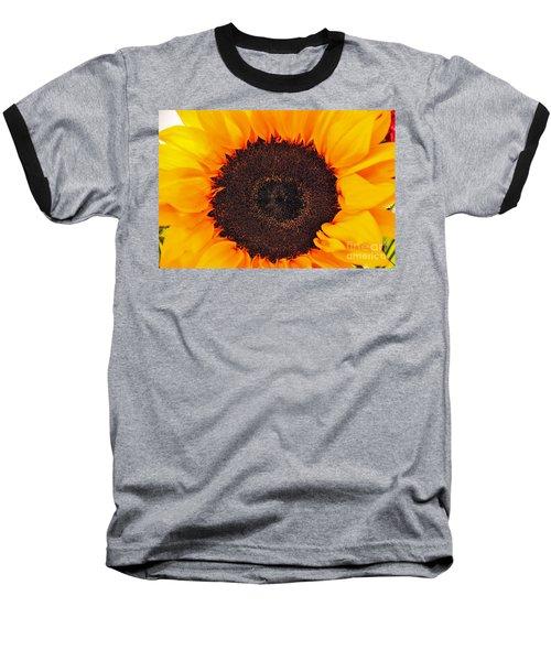 Sun Delight Baseball T-Shirt by Angela J Wright