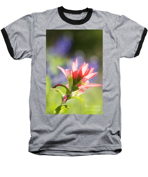 Sun Filled Paintbrush Baseball T-Shirt