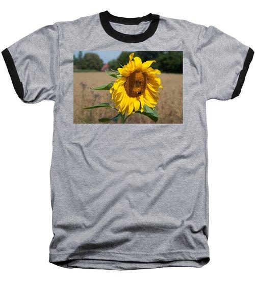 Sun Flower Fields Baseball T-Shirt