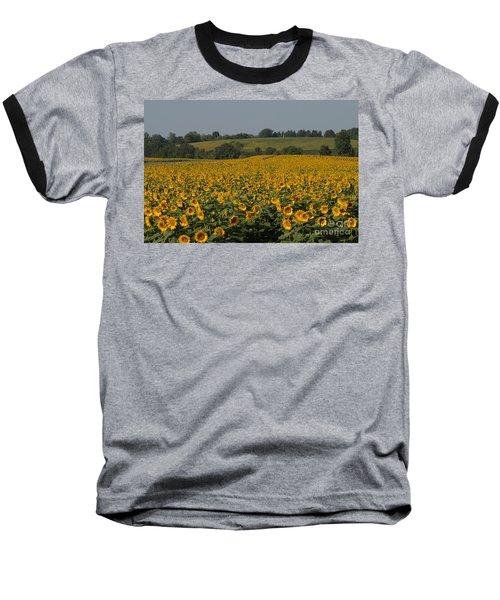 Sun Flower Sea Baseball T-Shirt