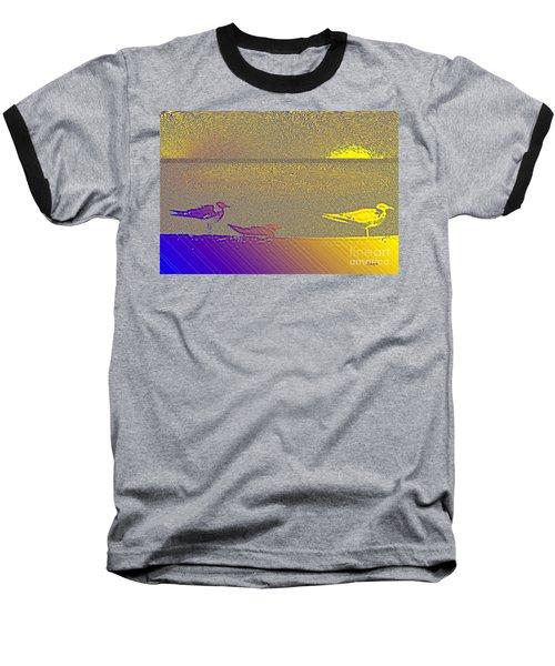 Sunbird Baseball T-Shirt
