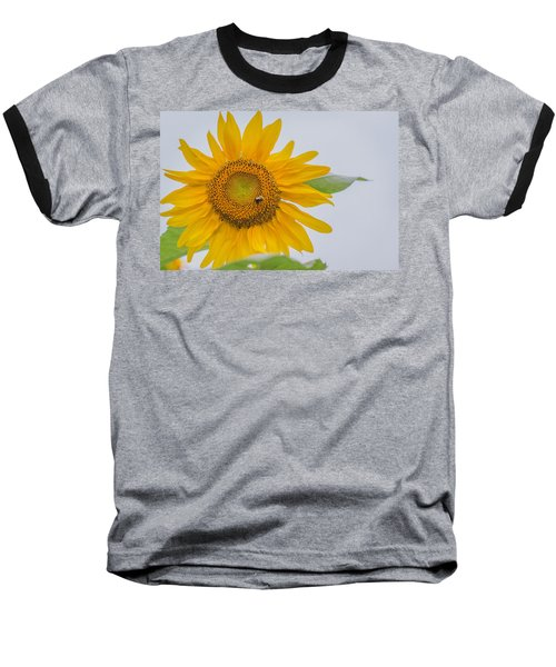 Sunflower And Bee Baseball T-Shirt