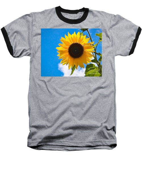Sunflower And Bee At Work Baseball T-Shirt
