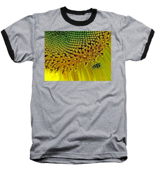 Sunflower And Beetle Baseball T-Shirt