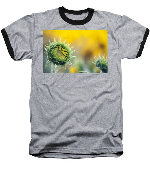 Sunflower Bloom Baseball T-Shirt