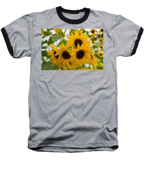 Sunflower Bouquet Baseball T-Shirt