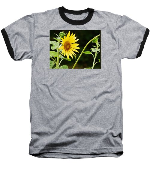Sunflower Cheer Baseball T-Shirt