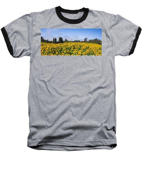 Sunflower Horizon Baseball T-Shirt