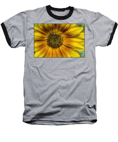 Sunflower In Oil Paint Baseball T-Shirt