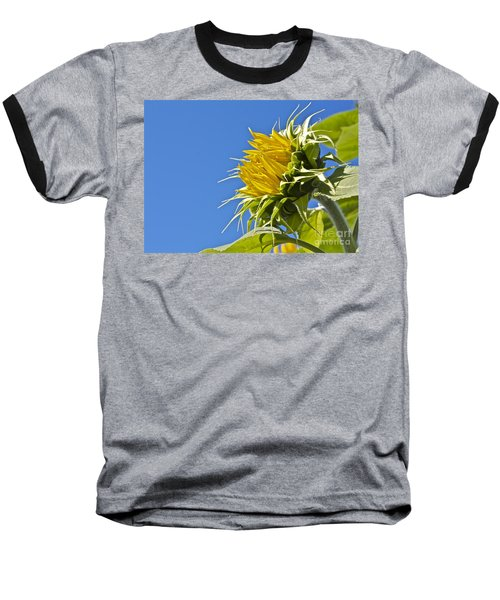 Baseball T-Shirt featuring the photograph Sunflower by Linda Bianic