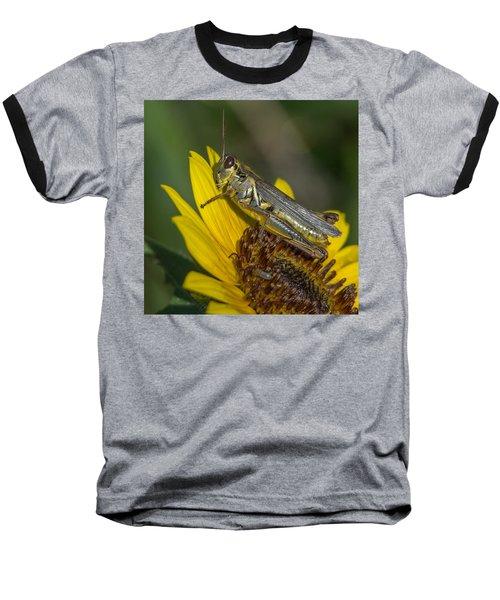Sunflower Love Baseball T-Shirt