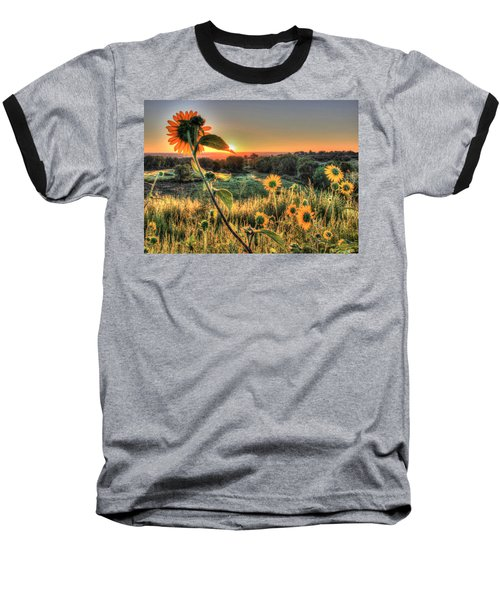 Sunflower Sunrise 1 Baseball T-Shirt by Diane Alexander