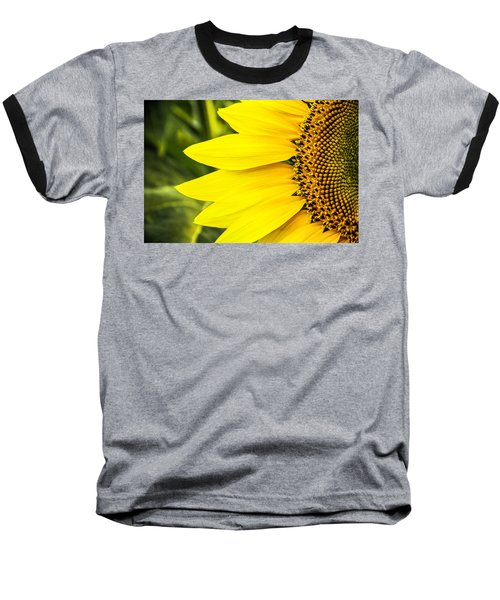 Sunflower Sunshine Baseball T-Shirt by Steven Bateson
