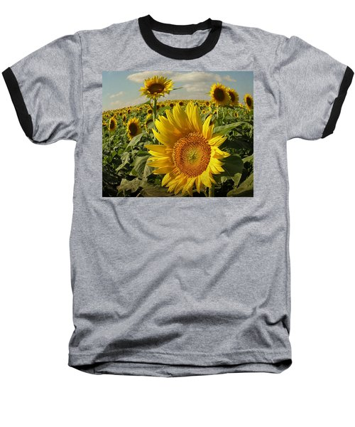 Kansas Sunflowers Baseball T-Shirt by Chris Berry