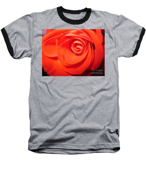 Sunkissed Orange Rose 9 Baseball T-Shirt