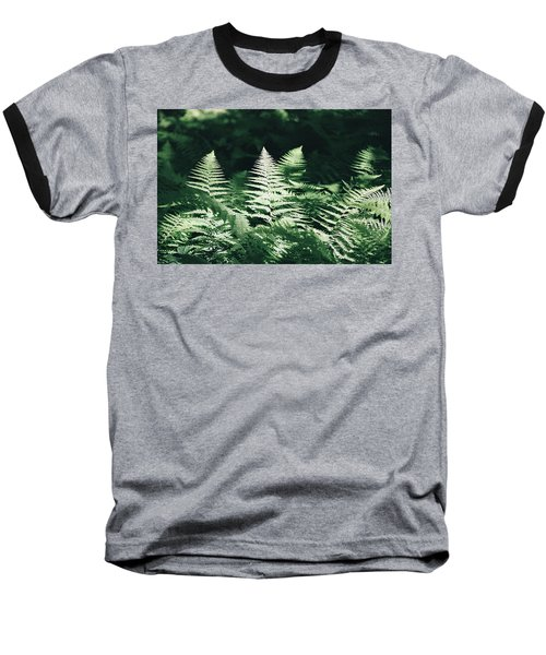 Baseball T-Shirt featuring the photograph Sunlight And Shadows-algonquin Ferns by David Porteus