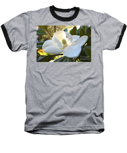 Sunlit Southern Magnolia Baseball T-Shirt