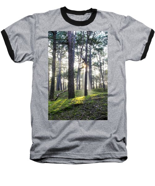 Sunlit Trees Baseball T-Shirt by Spikey Mouse Photography