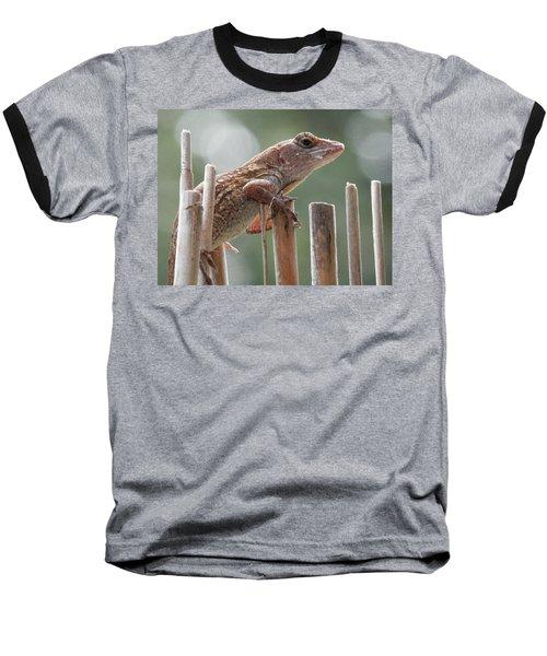 Sunning Lizard Baseball T-Shirt by Belinda Lee