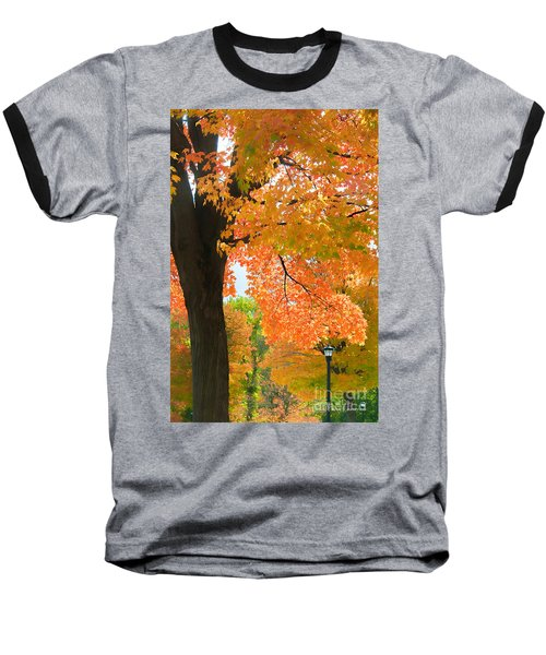 Sunny Fall Day By David Lawrence Baseball T-Shirt