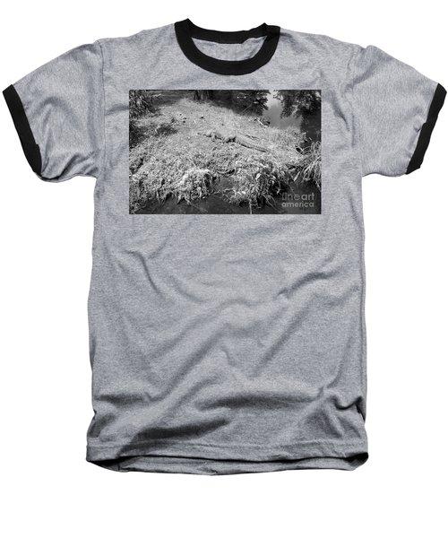 Baseball T-Shirt featuring the photograph Sunny Gator Black And White by Joseph Baril