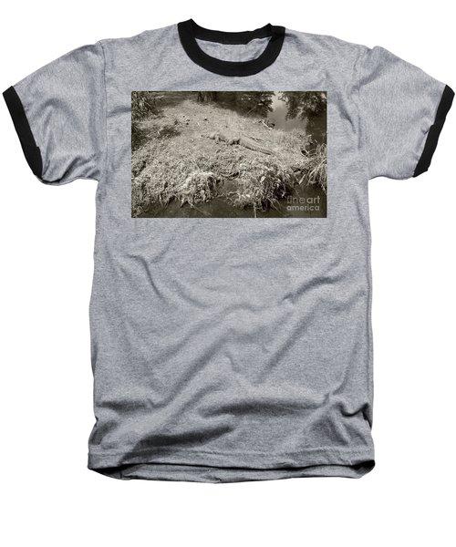 Sunny Gator Sepia  Baseball T-Shirt