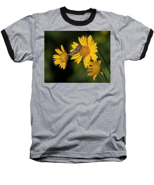 Sunny Hopper Baseball T-Shirt