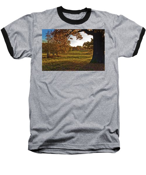 Sunny Richmond Autumn Baseball T-Shirt by Maj Seda