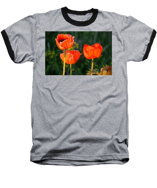 Sunset Poppies Baseball T-Shirt by Debbie Oppermann