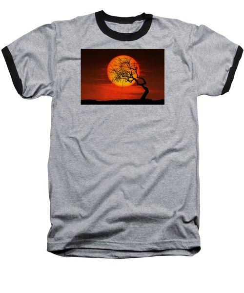 Sunset Tree Baseball T-Shirt by Bess Hamiti