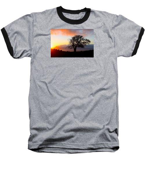 Sunset Tree In Maui Baseball T-Shirt by Venetia Featherstone-Witty