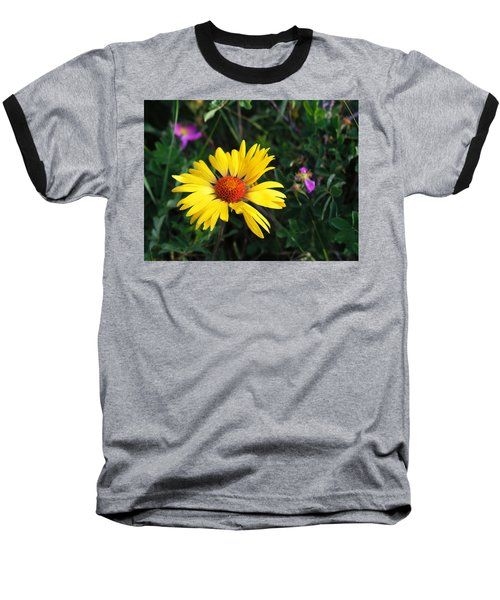Sunshine Baseball T-Shirt by Craig T Burgwardt