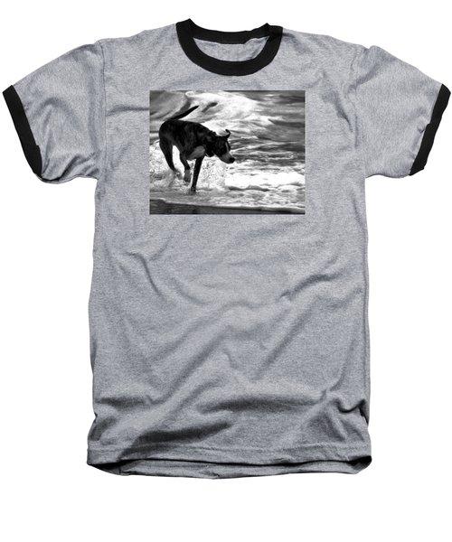 Surfer Bird Baseball T-Shirt by Robert McCubbin