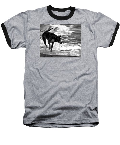 Surfer Bird Baseball T-Shirt