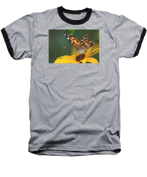 Susan Painted Lady Baseball T-Shirt by Reid Callaway