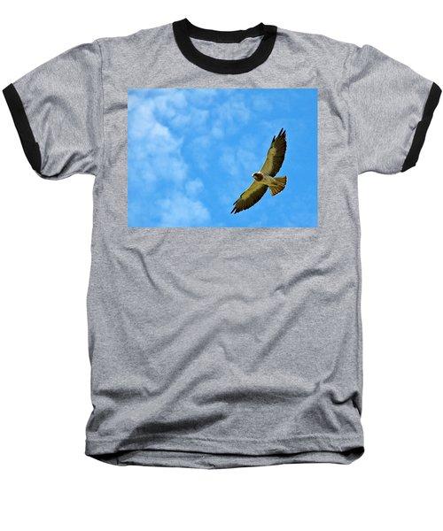 Swainson's Hawk Snake River Birds Of Prey Natural Conservation Area Baseball T-Shirt